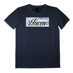 AI009_snow incor