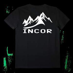 AI011_incor_back mountain