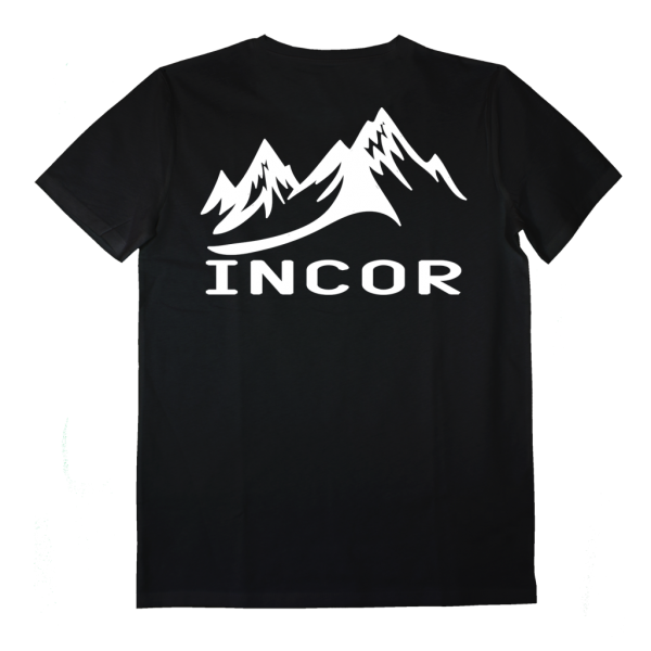 AI011_incor_back mountain